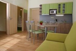 Kuchyň v Zeleném apartmánu